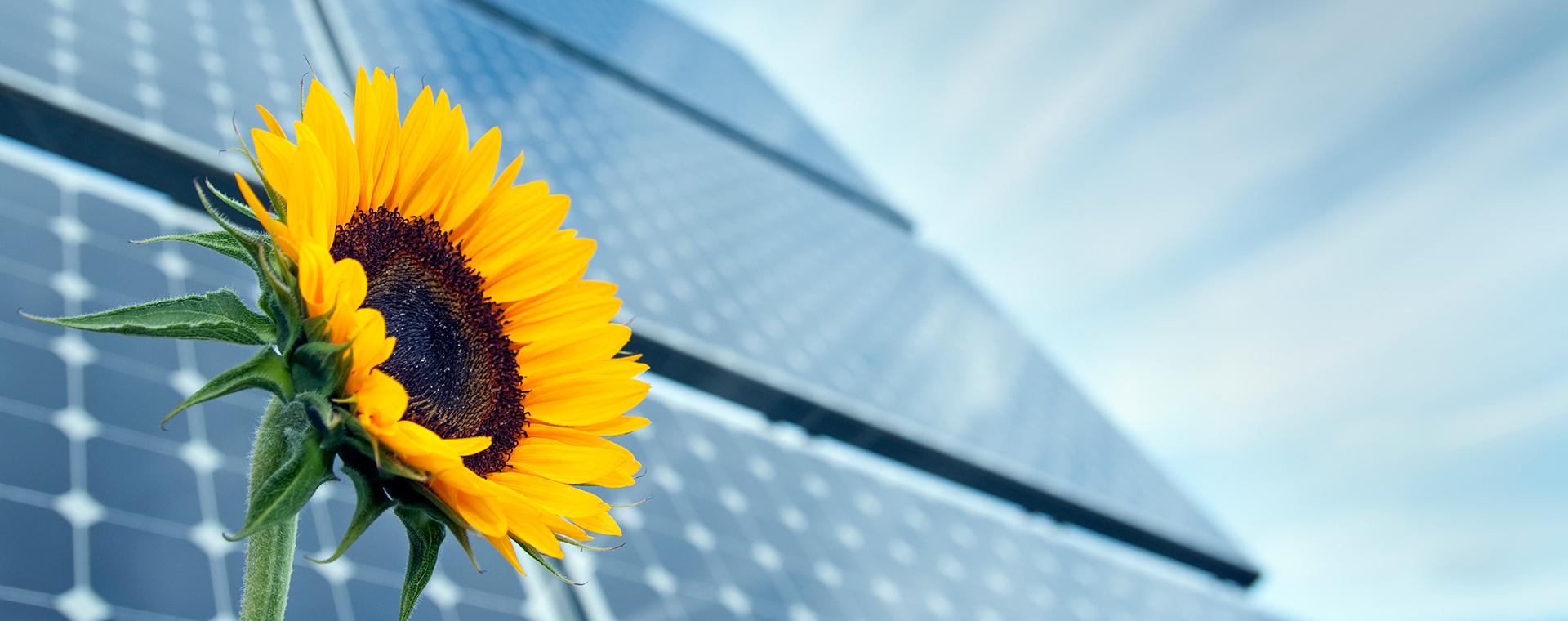Монтаж сетевой солнечной электростанции